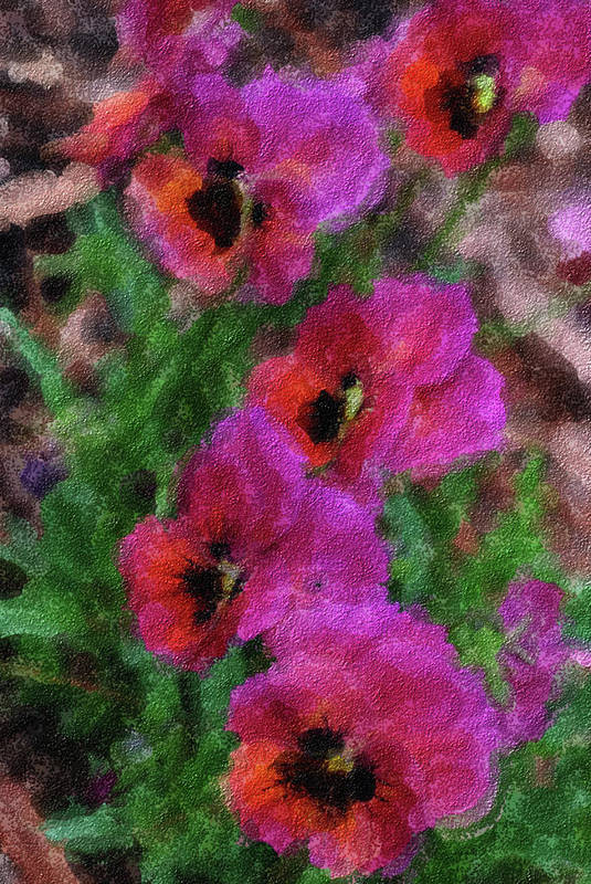 Pansy Painting Art Print featuring the painting Pansies Painting by Don Wright