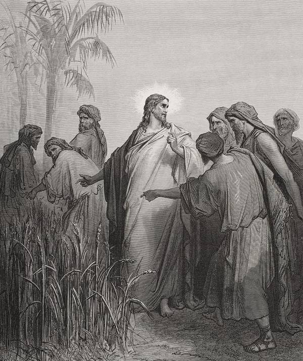Apostles; Walking; Preaching; Apostle; Disciple; Jesus Christ; Prophet Art Print featuring the drawing Jesus And His Disciples In The Corn Field by Gustave Dore