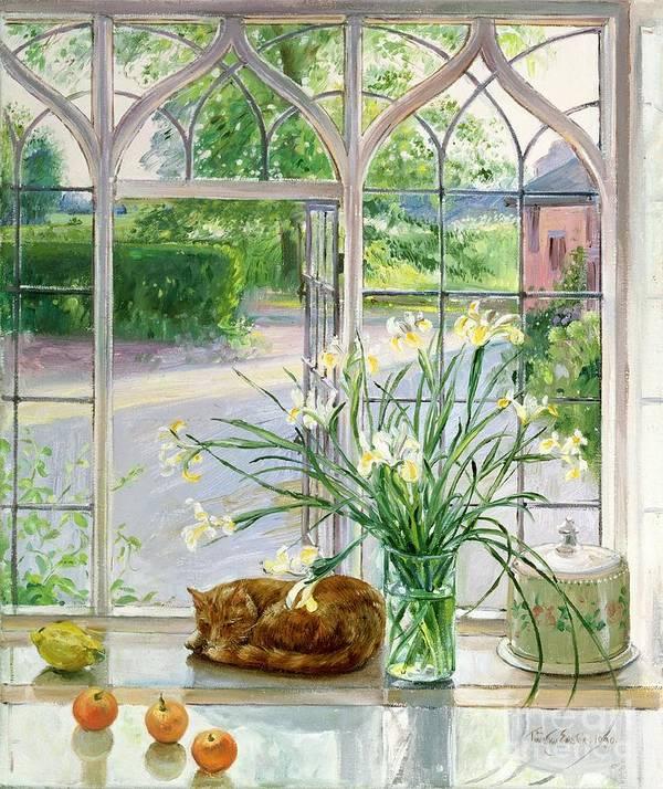 Apple; Lemon; Window; Garden Art Print featuring the painting Irises And Sleeping Cat by Timothy Easton