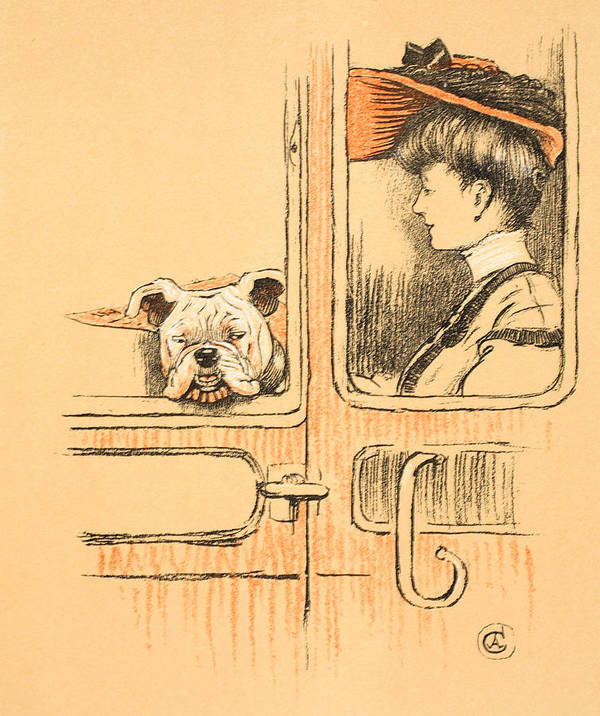Aldin Art Print featuring the painting Traveling In First Class by Cecil Charles Windsor Aldin