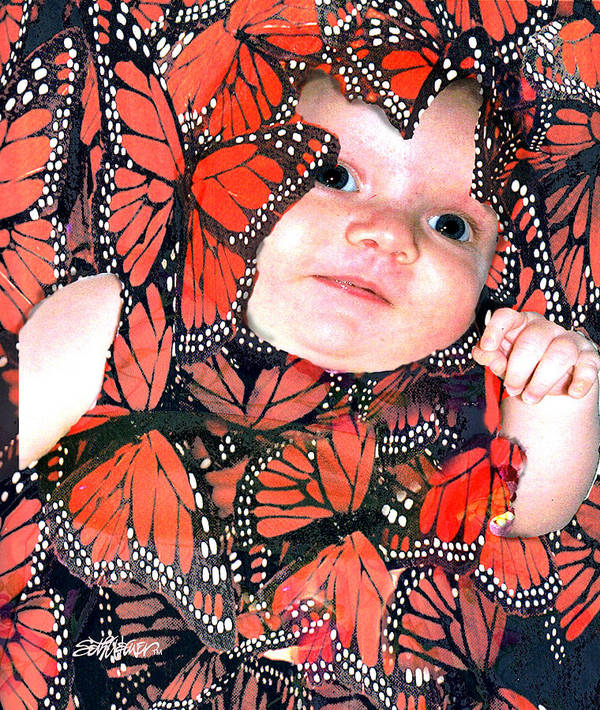 Butterfly Art Print featuring the photograph Butterfly Baby by Seth Weaver