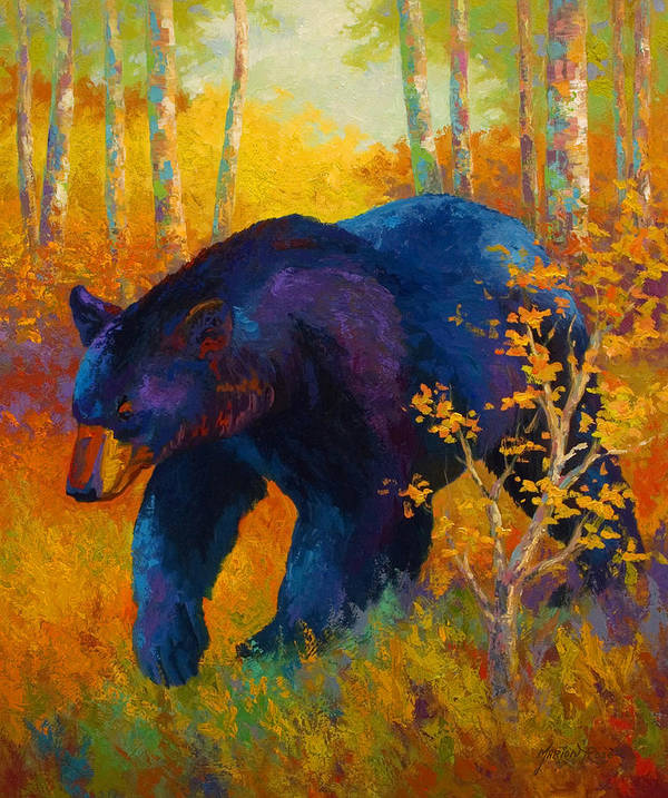 Bear Art Print featuring the painting In To Spring - Black Bear by Marion Rose