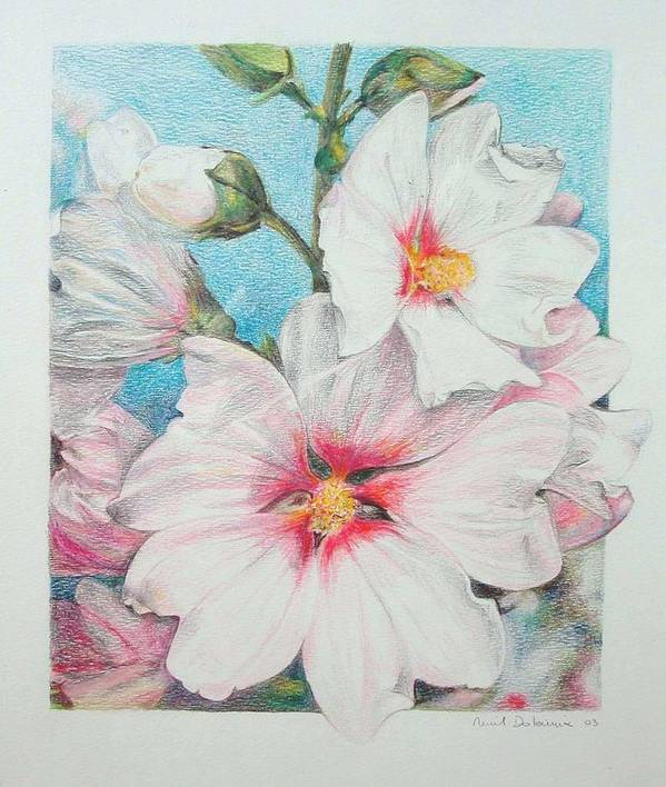 Flower Art Print featuring the painting Lavater by Muriel Dolemieux