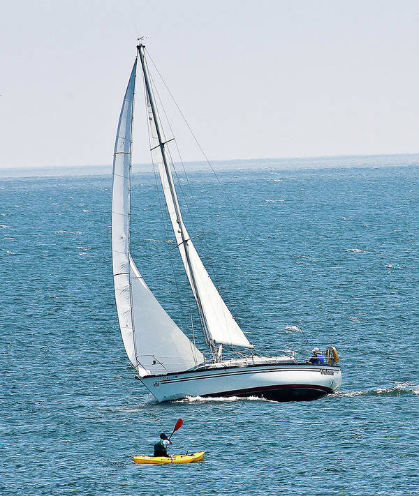 Sailboat Art Print featuring the photograph On The Bay by Liz Santie