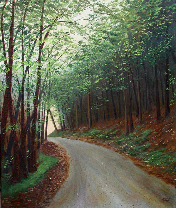 Original Acrylic On Stretched Canvas Landscape Path Forest Trees Art Print featuring the painting Out Of Darkness by Sharon Steinhaus