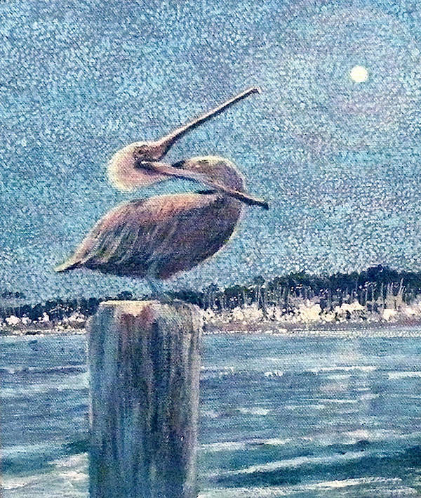 Water Art Print featuring the painting Pelikan At Night Santa Barbara Harbor by Wendy Hill