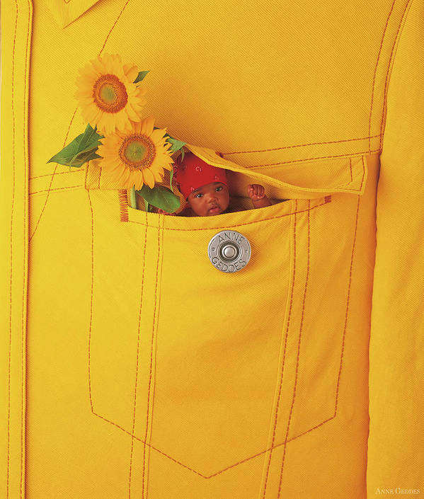 Sunflowers Art Print featuring the photograph Small Change by Anne Geddes