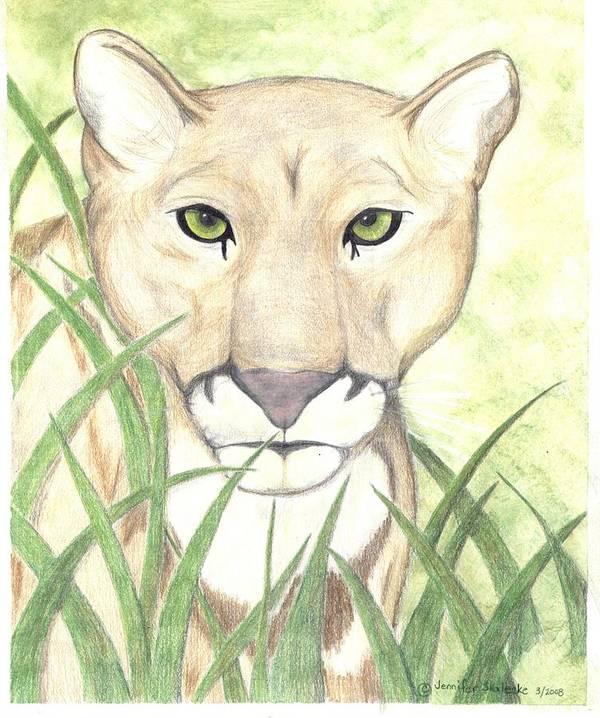 Mountain Lion Art Print featuring the drawing Stalker by Jennifer Skalecke
