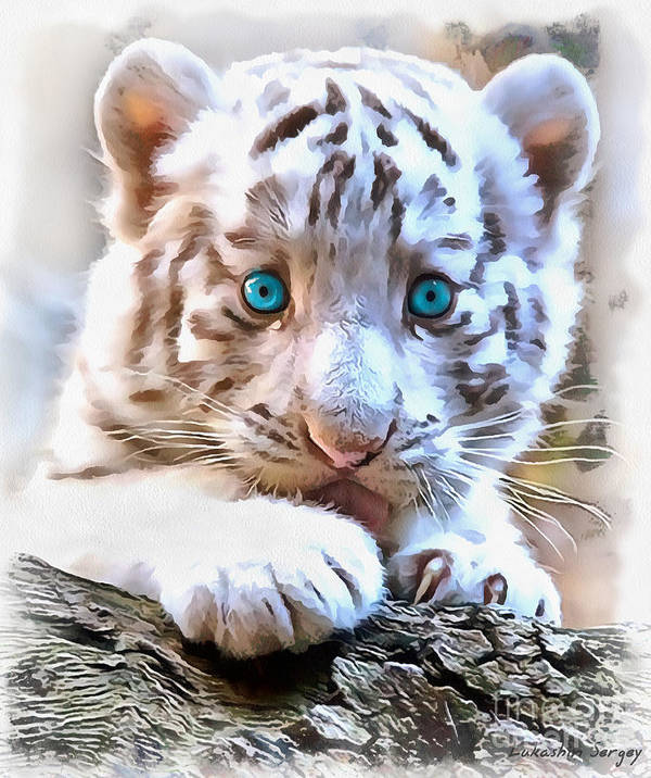 White Tiger Cub Art Print featuring the painting White Tiger Cub by Sergey Lukashin