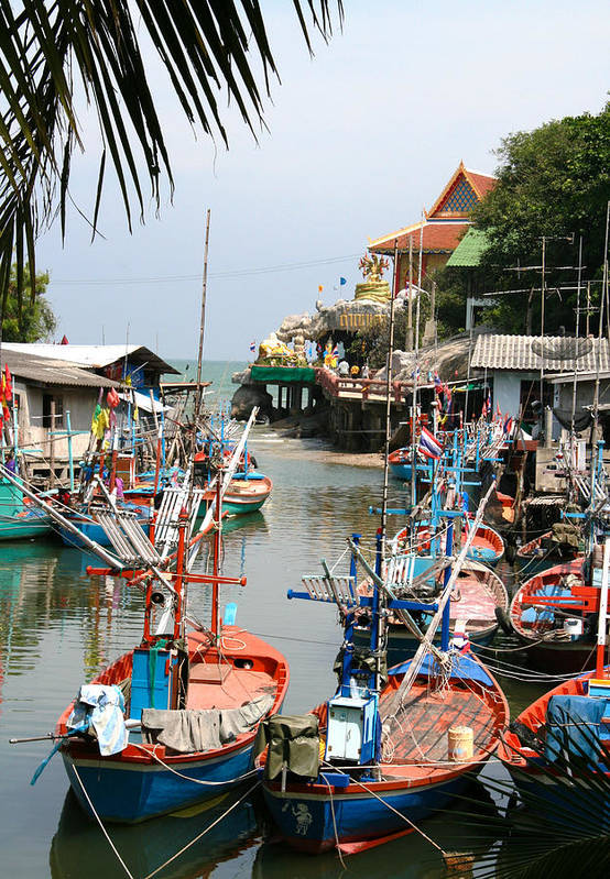 Temple Art Print featuring the photograph Fishing Boats by Adrian Evans