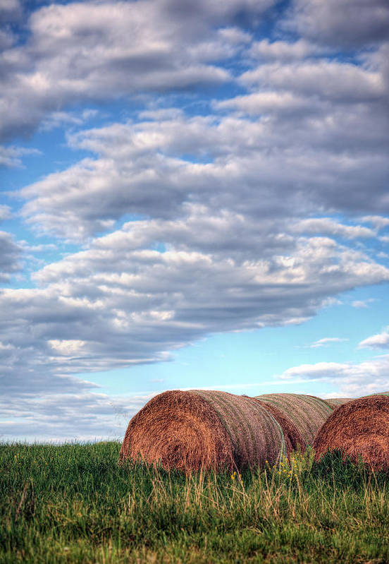 Hay Print featuring the photograph Hay It's Art by JC Findley