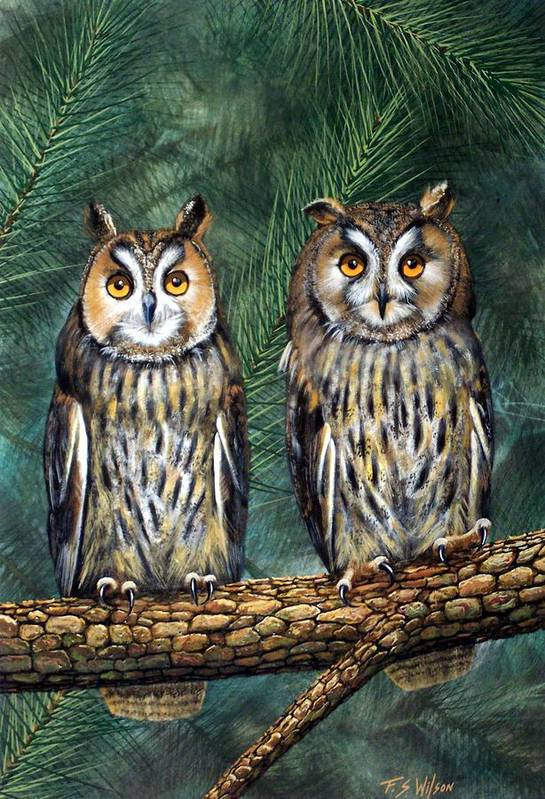 Wildlife Art Print featuring the painting Perfect Strangers by Frank Wilson