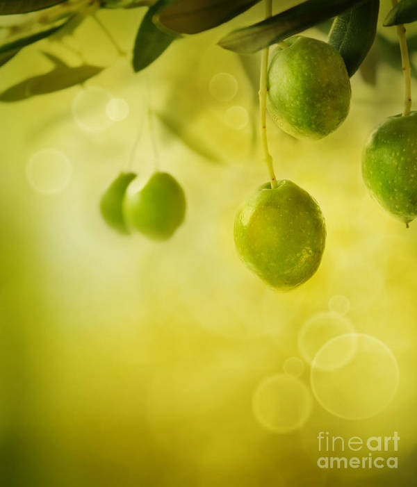 Aged Art Print featuring the photograph Olives Design Background by Mythja Photography