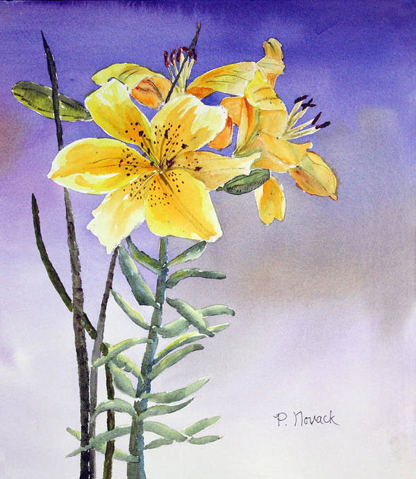 Lily Art Print featuring the painting Daylilies by Patricia Novack