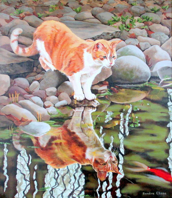 Cat Art Print featuring the painting Reflecting by Sandra Chase