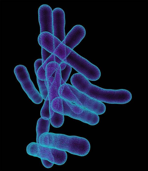 Artwork Art Print featuring the photograph Tuberculosis Bacteria, Artwork by Mehau Kulyk