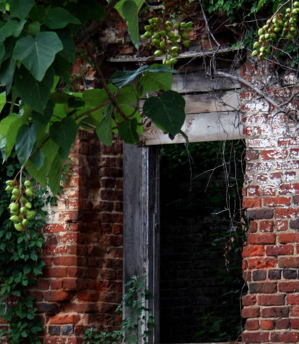 Petersburg Art Print featuring the photograph Hole In The Wall2 by Karen Harrison
