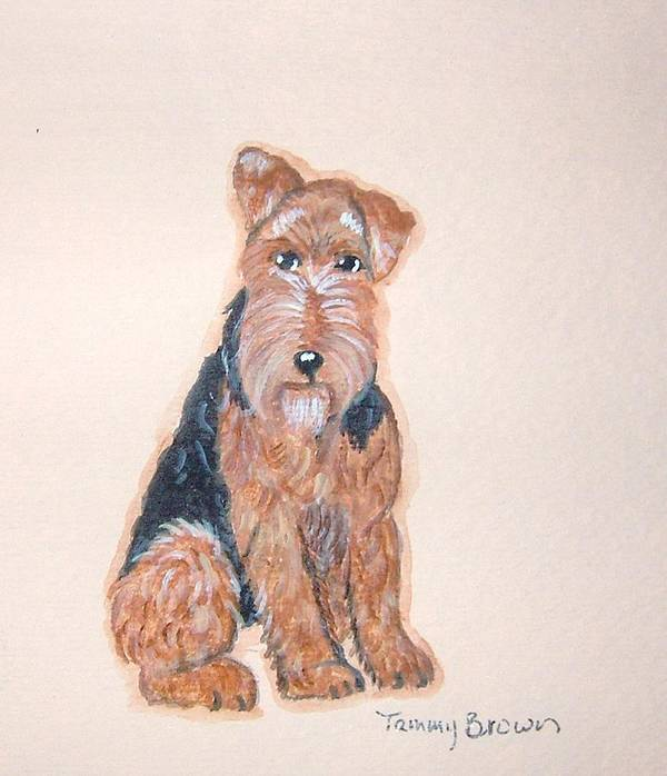 Airedale Terrier Art Print featuring the painting Airedale Terrier by Tammy Brown