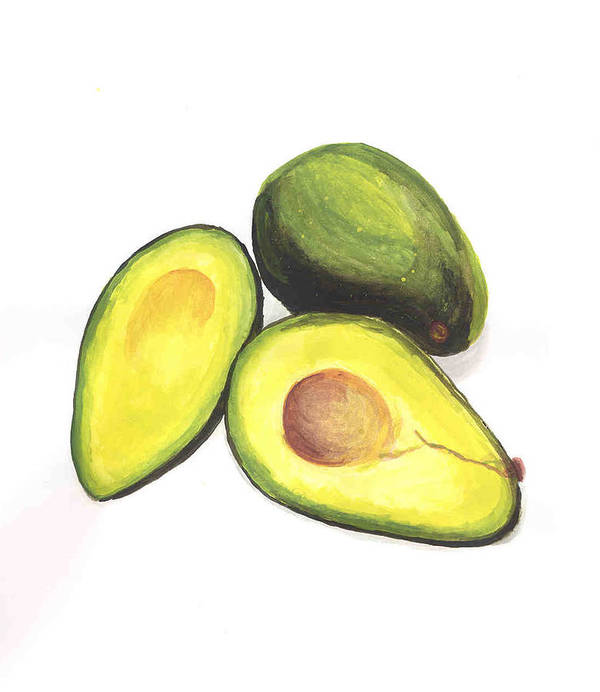 Avaocados Still Life Art Print featuring the painting Avocados by David Seter