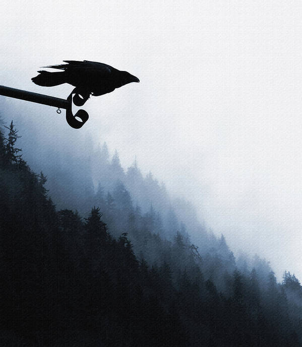 Raven Art Print featuring the digital art Chevron Raven by Perri Kelly