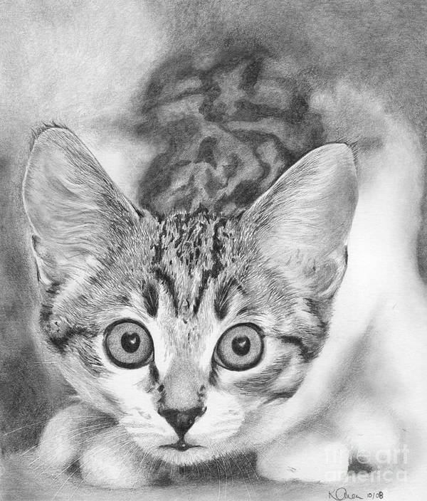 Cat Art Print featuring the drawing Tiddles by Karen Townsend