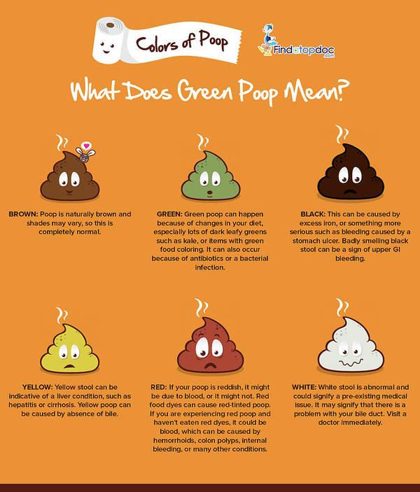 What Does Green Poop Mean? Art Print