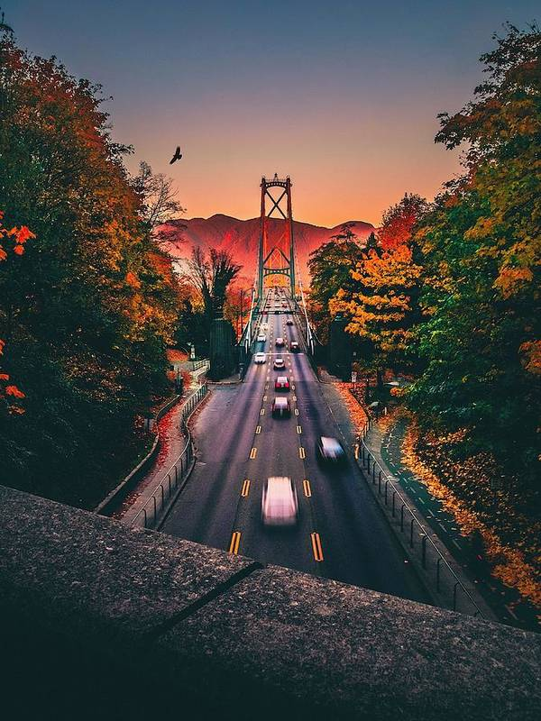 Orange Color Art Print featuring the photograph Blurred Motion Of Cars On Suspension Bridge During Sunset by Michael Wu / EyeEm