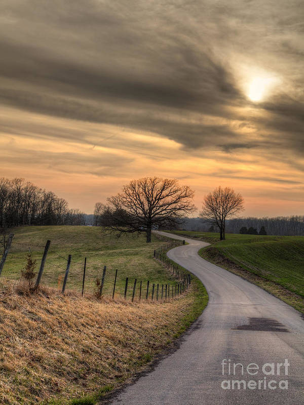 2014 Art Print featuring the photograph Country Road At Sunset by Larry Braun