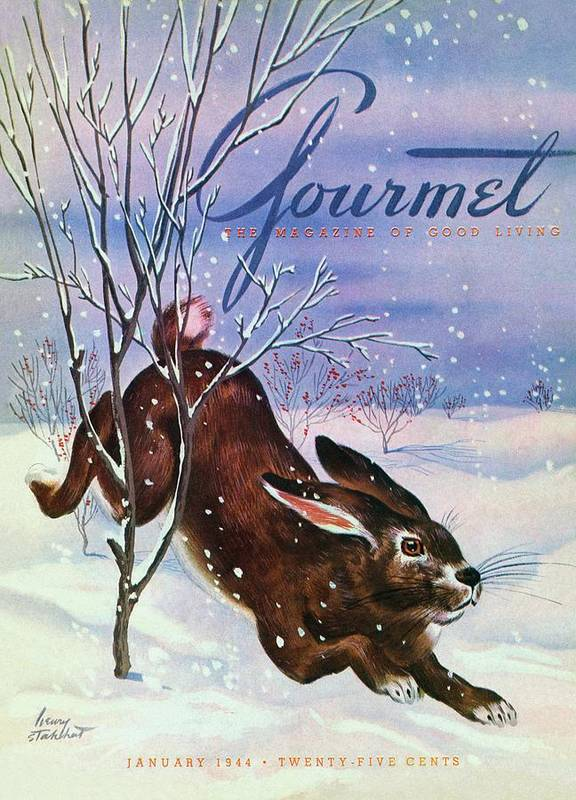 Illustration Art Print featuring the photograph Gourmet Cover Of A Rabbit On Snow by Henry Stahlhut