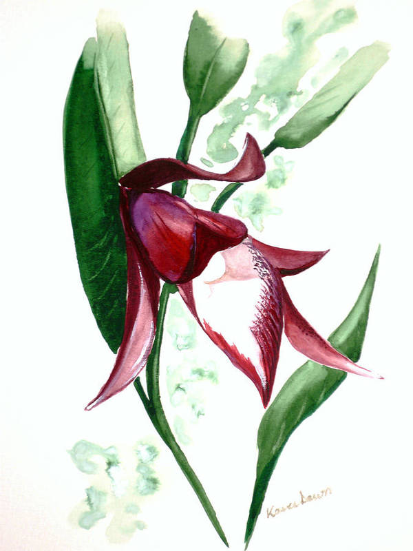 Art Print featuring the painting Ground Orchid by Karin Dawn Kelshall- Best