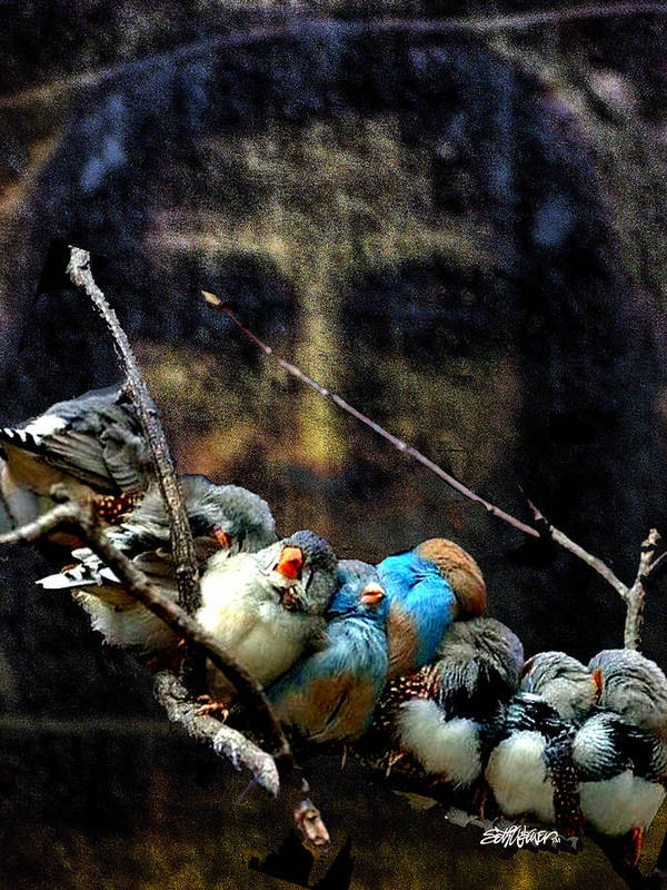 His Eye Is On The Sparrow Art Print featuring the digital art His Eye Is On The Sparrow by Seth Weaver