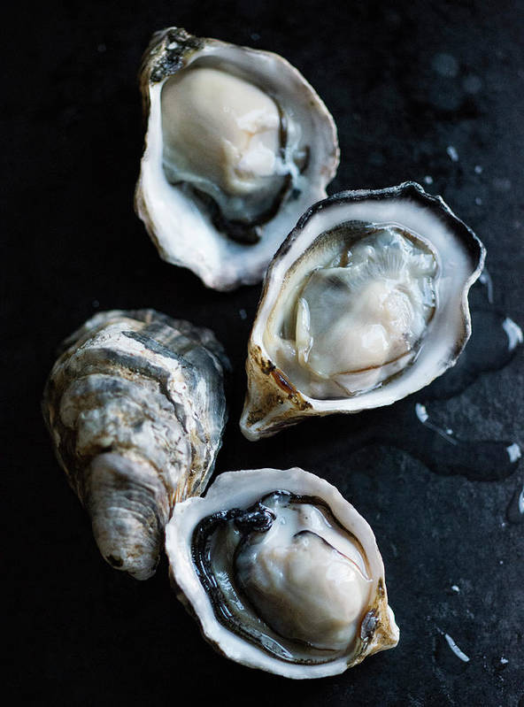 Oyster Art Print featuring the photograph Raw Oysters by Jack Andersen