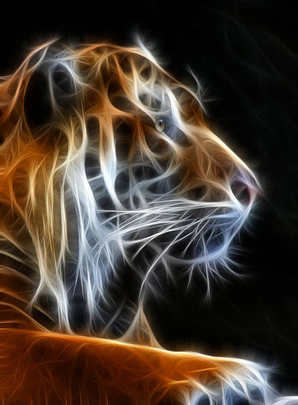 Tiger Art Print featuring the photograph Tiger Fractal 2 by Shane Bechler