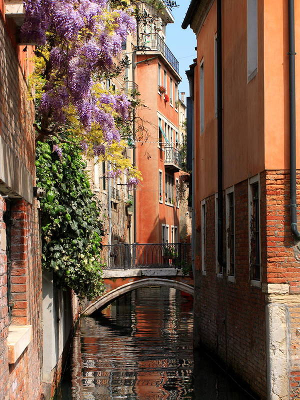 Venice Art Print featuring the photograph Canal in Venice with Flowers by Michael Henderson