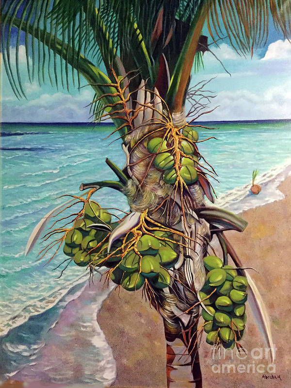 Coconuts Art Print featuring the painting Coconuts on beach by Jose Manuel Abraham