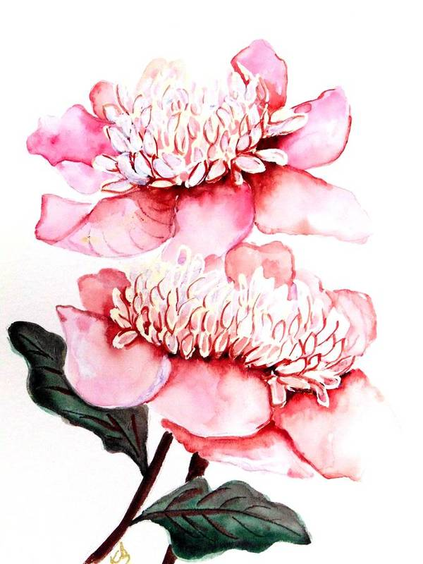 Pink Flower Art Print featuring the painting Pink Peony 2 by Karin Dawn Kelshall- Best