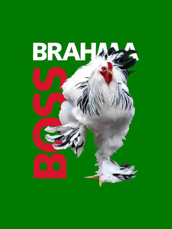Brahma Art Print featuring the digital art Brahma Boss T-shirt print by Sigrid Van Dort
