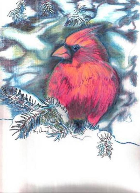 Birds Cardinals Nature Wildlife Pets Art Print featuring the drawing Cardinal 2 by Raymond Doward