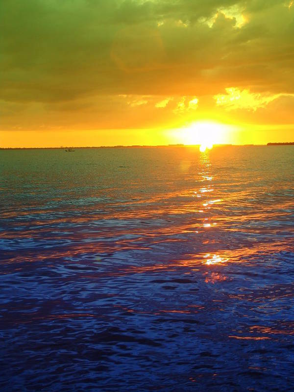 Sunset Art Print featuring the photograph Color Me A Tropic Sunset by Florene Welebny