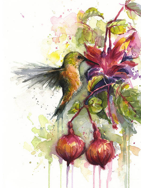 Hummingbird Art Print featuring the painting Hummingbird and Fuchsia by Olga Shvartsur