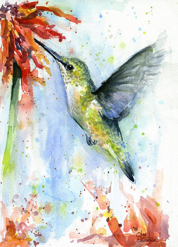 Watercolor Art Print featuring the painting Hummingbird and Red Flower Watercolor by Olga Shvartsur