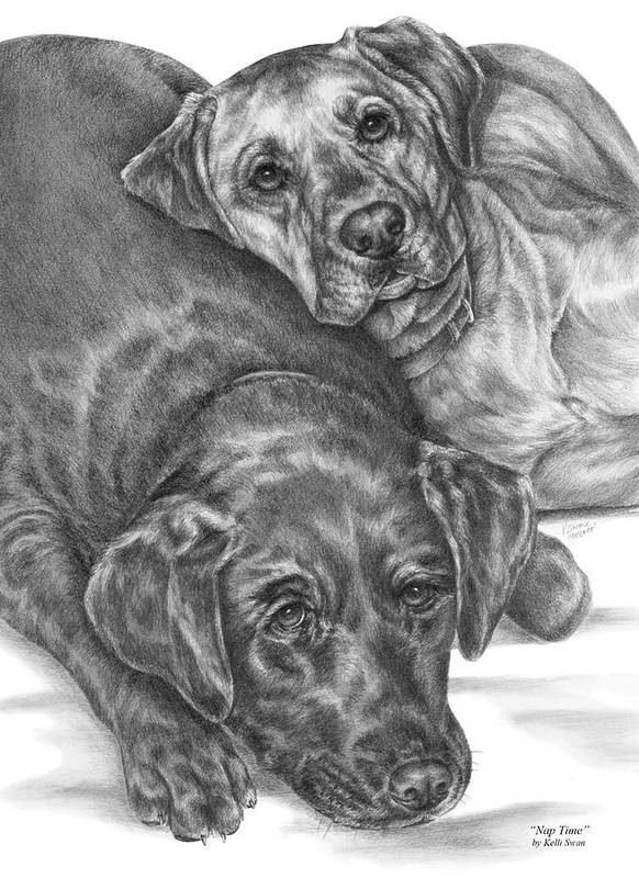 Two Art Print featuring the drawing Labrador Dogs Nap Time by Kelli Swan