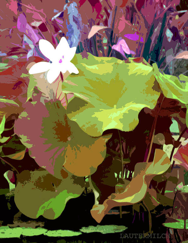 Lotus Art Print featuring the photograph Lotus Design by John Lautermilch