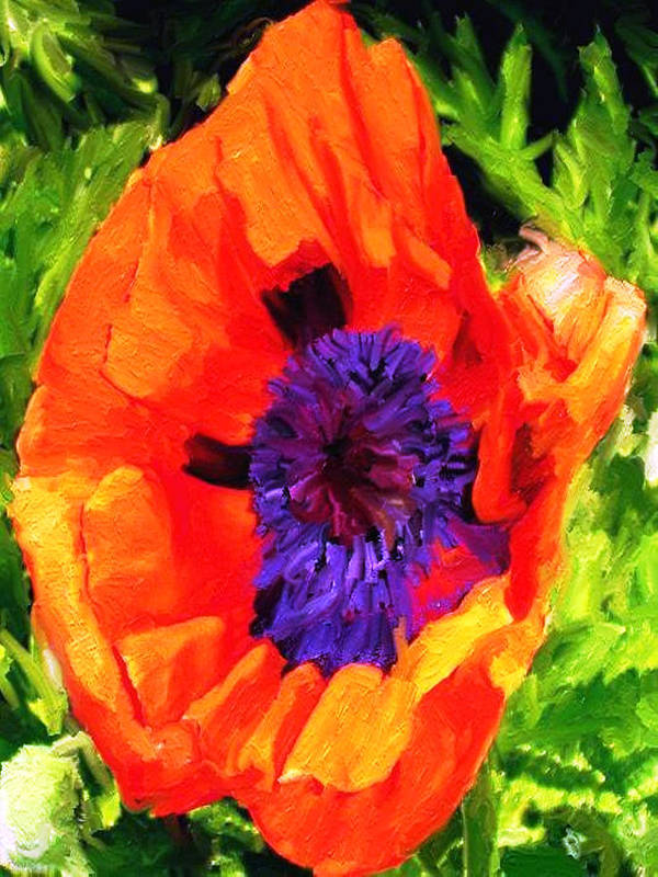 Poppies Art Print featuring the digital art Margo's Poppy by Randy Sprout