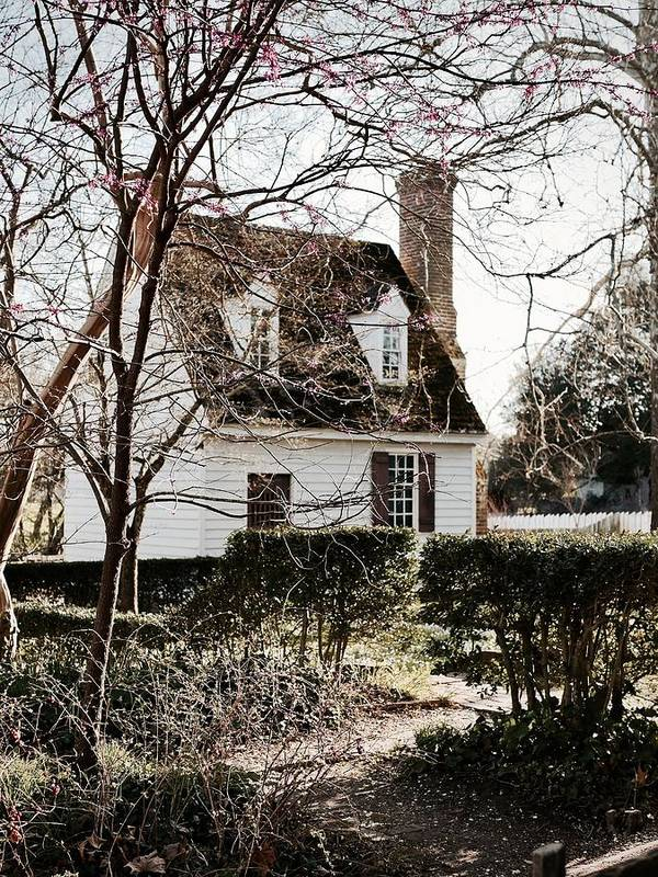 Colonial Williamsburg Art Print featuring the photograph Spring In Colonial Williamsburg by Rachel Morrison