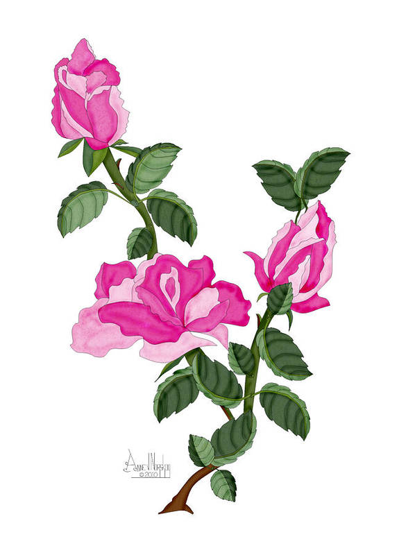 Roses Art Print featuring the painting Three Roses in the Garden by Anne Norskog