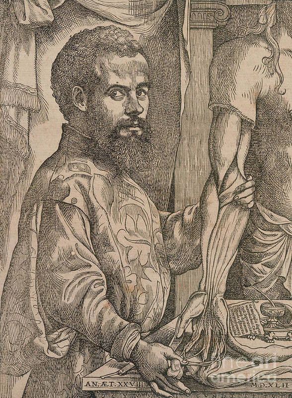 People Art Print featuring the drawing Andreas Vesalius Dissecting The Muscles by Print Collector