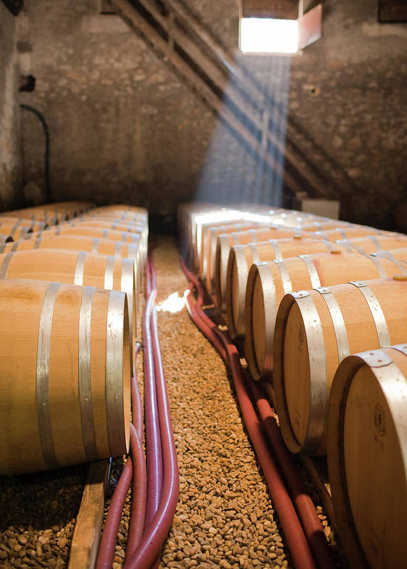 Alcohol Art Print featuring the photograph Barrels In Wine Cellar by Johner Images