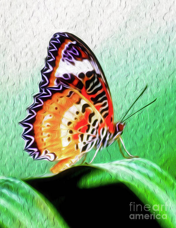 Butterfly Art Print featuring the digital art Malay Lacewing Butterfly II by Kenneth Montgomery
