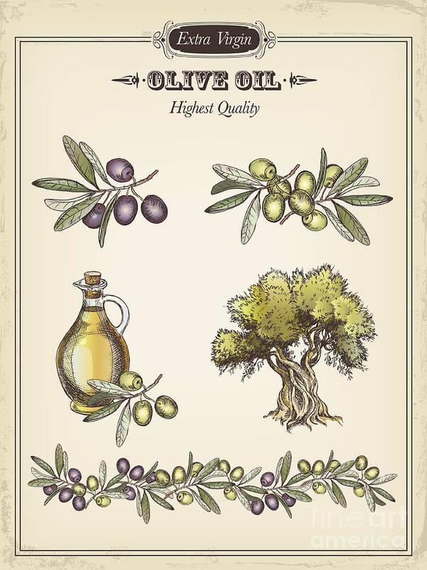 Olive Art Print featuring the digital art Olive by Tatarnikova
